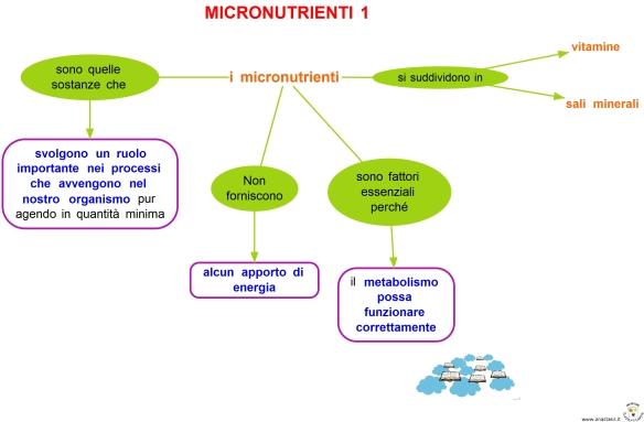i micronutrienti1