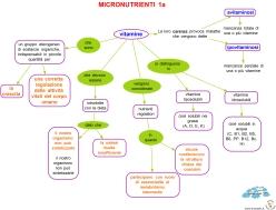 micronutrienti 1a