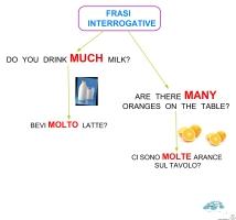 frasi-interrogative-much-many