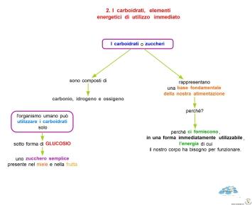 11-5-i-carboidrati-elementi-energetici-di-utilizzo-immediato