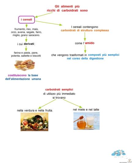 11-a-gli-alimenti-piu-ricchi-di-carboidrati-sono